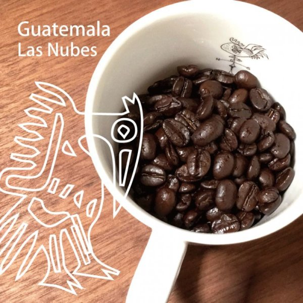 画像1: グァテマラ プロヴィデンシアI  200g (1)